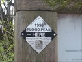 Image for 1996 Flood Mark - Portland, OR