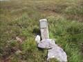 Image for South Peat Pass Marker, Walkham Head, North Dartmoor, Devon