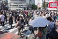 Image for BUSIEST pedestrian crossing in the world - Shibuya Crossing, Tokyo