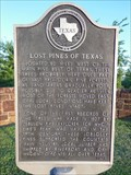 Image for Lost Pines of Texas