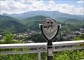 Image for Sky Lift Upper Station Binocular #2