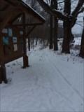 Image for Shore Acres MTB Trail - Saugatuck, Michigan