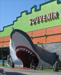 Image for Giant  Shark - Satellite Oddity -  Gulf Shores, Alabama, USA.