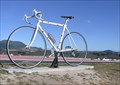 Image for The Giant Bicycle. Taupo. New Zealand.