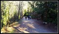 Image for Seaview Walk Trailhead — West Vancouver, BC
