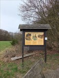 Image for Rot- , Reh- und Schwarzwild - Langscheid, Rheinland-Pfalz / Germany