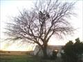 Image for Aermotor 702 Windmill Near Crandall, Texas