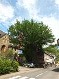 Image for Friedenseiche, Altenahr RLP / Germany