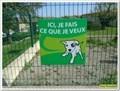 Image for Ici, je fais ce que je veux - Saint Paul lez Durance, France