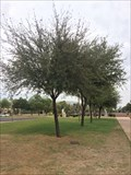 Image for Michael J. Brophy - Phoenix, AZ