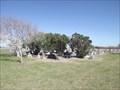 Image for El Toro Cemetery - San Perlita TX