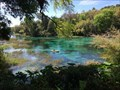 Image for Rainbow Springs - Dunnellon, Florida, USA