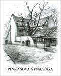 Image for Pinkasova synagoga  by  Karel Stolar - Prague, Czech Republic
