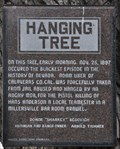 Image for Hanging Tree