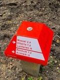 Image for 25337/001 - Nieuw-Reemst (Mossel)