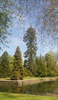 Image for Le sequoia du parc de Richelieu - Richelieu, Centre