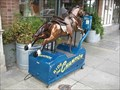 Image for Horse ride - Petaluma, CA