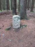 Image for Borderstone # 168 (Series 'M') - Münchberger Stadtwald, BY, Deutschland