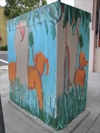 Dog Walker, Looking N, San Jose, CA