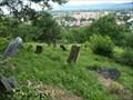 Image for židovský cintorin / jewish cementery, Vranov nad Toplou, Slovakia