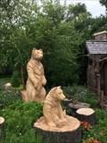 Image for Tree Bears - Lake Buena Vista, FL