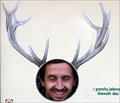Image for Deer antlers at the zoo, Decin, Czech Republic
