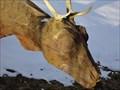 Image for Wooden Deers - Jungholz, Austria, TIR