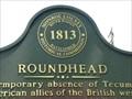 Image for Roundhead - Monroe, Michigan, USA.