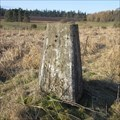 Image for O.S. Triangulation Pillar - The Warren (Glamis), Angus.