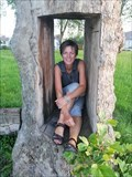 Image for Take a picture while sitting in a tree, Maak een foto zittend in een boom