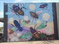 Image for Vibratory Messages Generated by Tethered Bees - Oklahoma City, OK