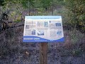 Image for Old Field Succession - Boundary Creek Natural Resource Area - Moorestown, NJ