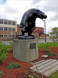 Image for UMO Black Bear - Orono, ME