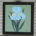 Image for Tennessee Iris - New Market, TN