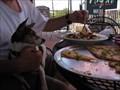 Image for Angel's Mexican Food - Sedona, AZ