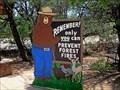 Image for Smokey Bear - Payson, AZ
