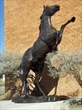 Image for Bronco - Breckenridge, TX