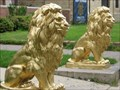 Image for Lions at Sigma Alpha Epsilon Fraternity - University of Minnesota