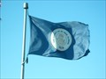 Image for Municipal Flag - DuPage County, IL
