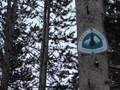 Image for Pacific Crest Trail at Carson Pass   CA