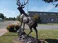 Image for The Elks Lodge Elk - Mena, AR