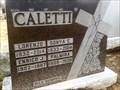 Image for 100 - Palmira Caletti - Notre-Dame Cemetery, Ottawa, Ontario