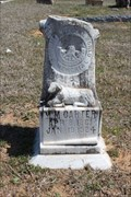 Image for M.M. Carter - Long Branch Cemetery - Eastland County, TX