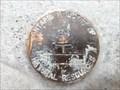 Image for MNR Unstamped Disk - Gogama, ON