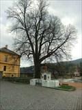 Image for Lime of St. John of Nepomuk, Dobrichovice, CZ