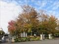 Image for OLDEST - Beech Tree in the city of Drummondville, Québec - Le plus vieux Hêtre dans la ville de Drummondville, Québec