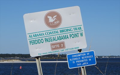 Perdido Pass - Perdido Beach