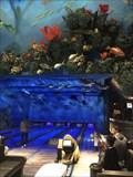 Image for Fish Bowl - San Jose, California