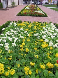 See plaque in distance at far end of flowerbeds.