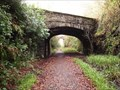 Image for Tavistock Viaduct Walk Railway Cutting, Bridge 2